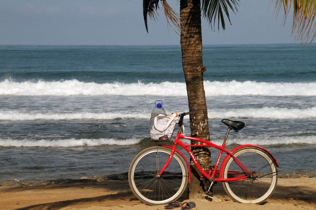 Red bicycle leaning against a tree in Bocas del Toro