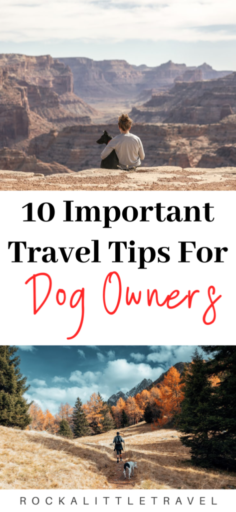Travel tips for dog owners Pinterest Pin
