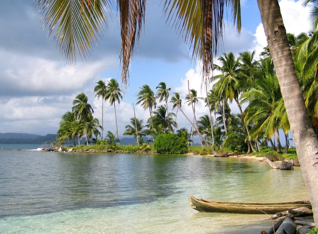 Beach in Panama with palm trees