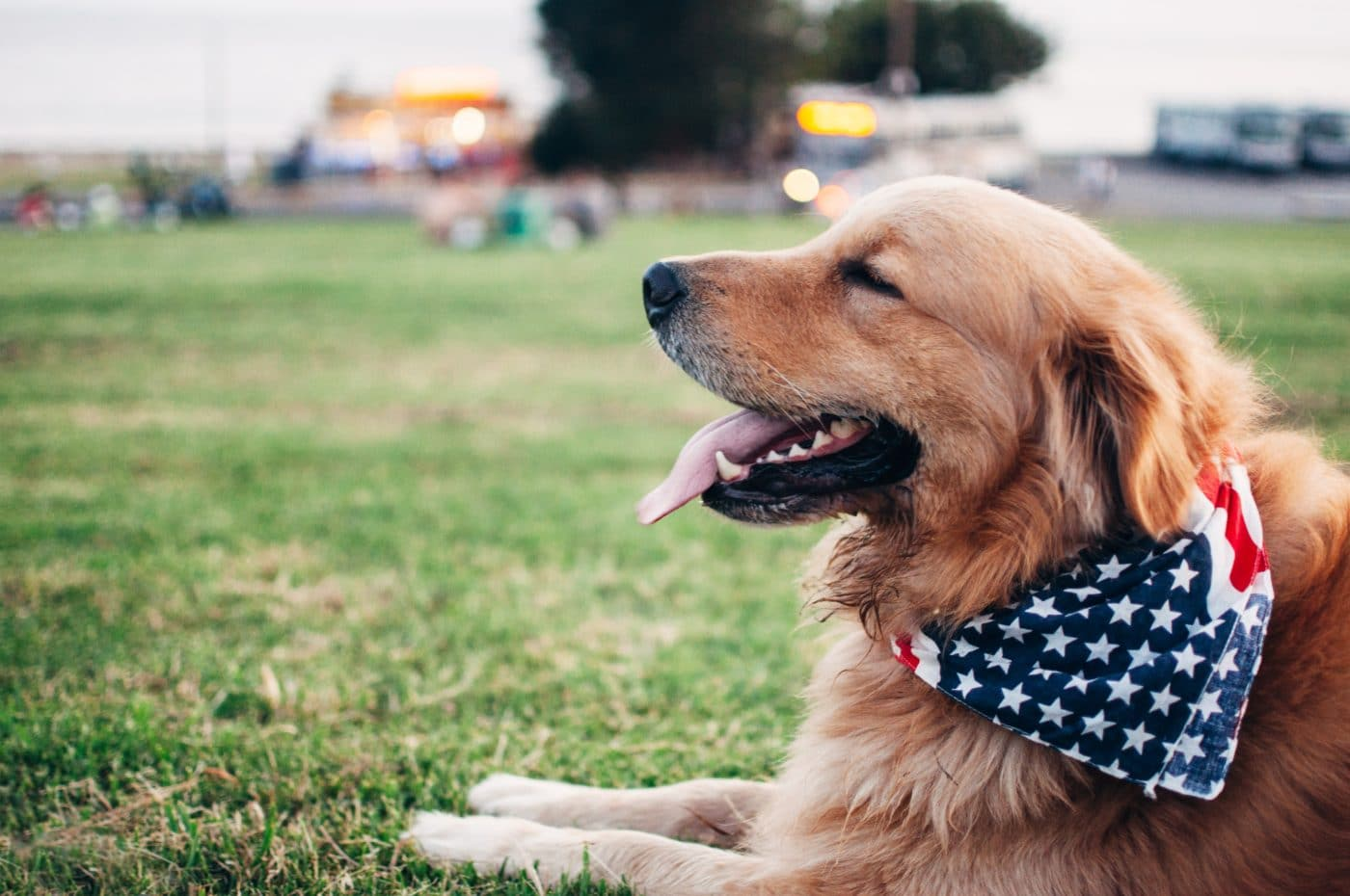 Best places to celebrate 4th of july in Los Angeles