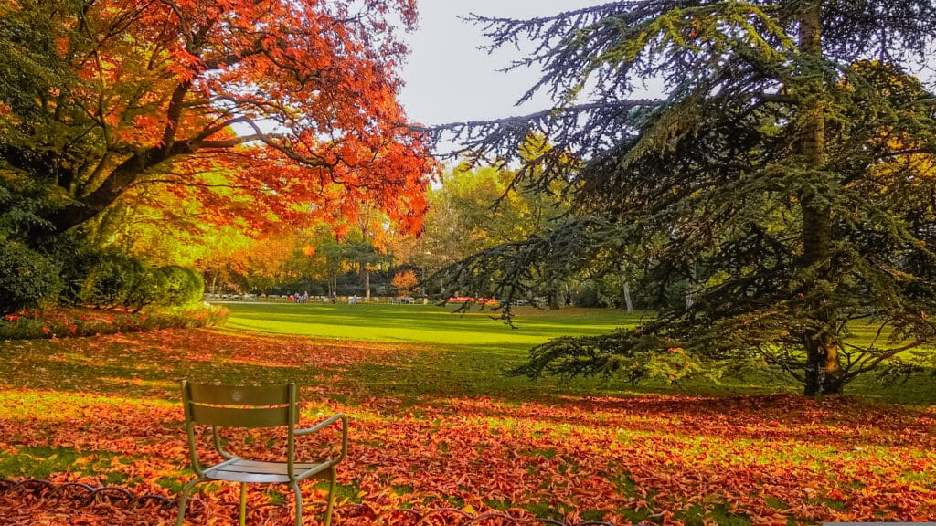 Jardin du Luxembourg in the fall