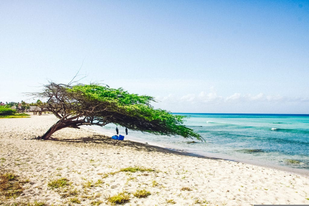 Travel Tips for Aruba, Eagle Beach