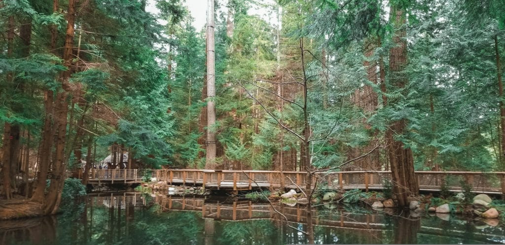 Capilano Suspension Bridge Park, Vancouver