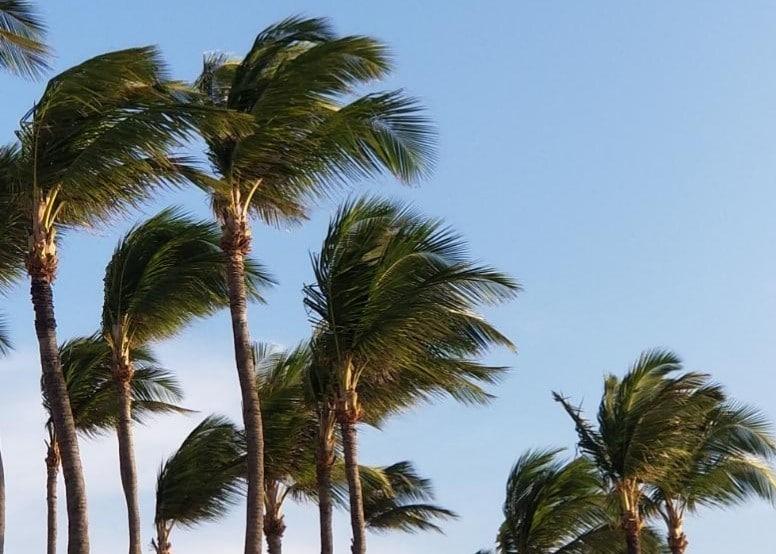 Palm Beach, Aruba