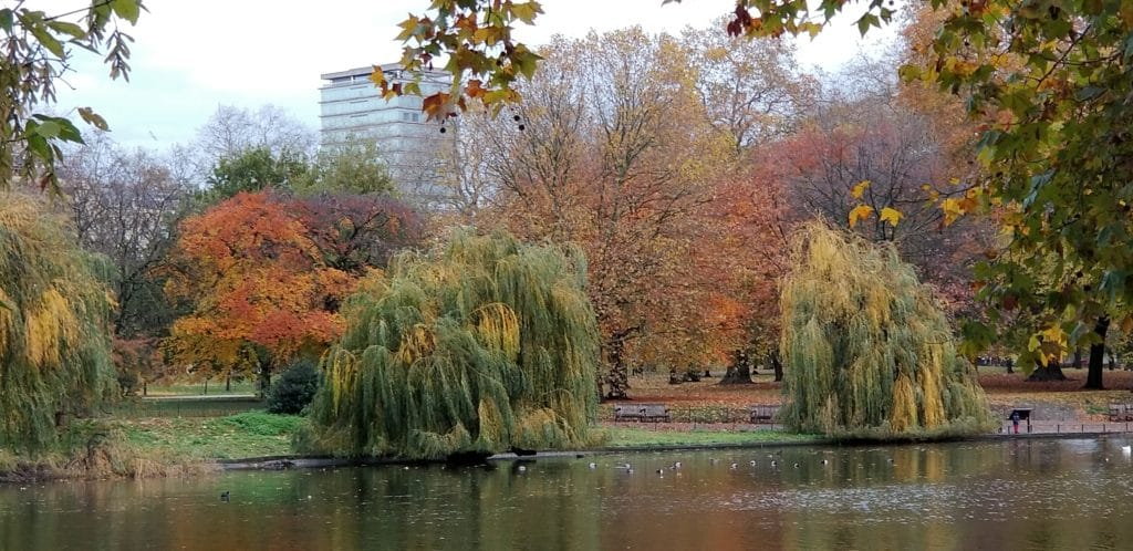 Fall foliage at Hyde Park in London