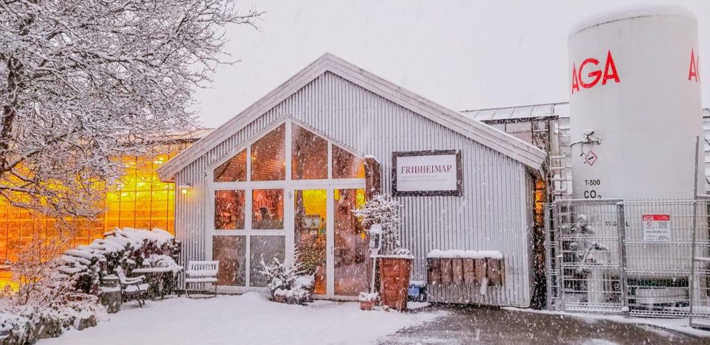 Fridheimar greenhouse
