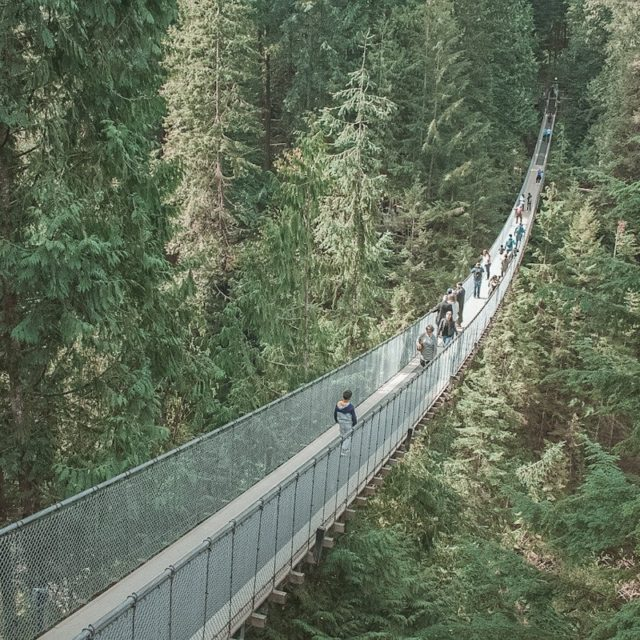 Capilano Suspension Bridge Facts