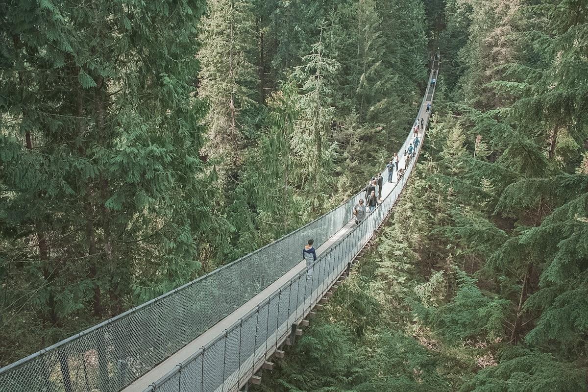 Capilano Suspension Bridge Facts