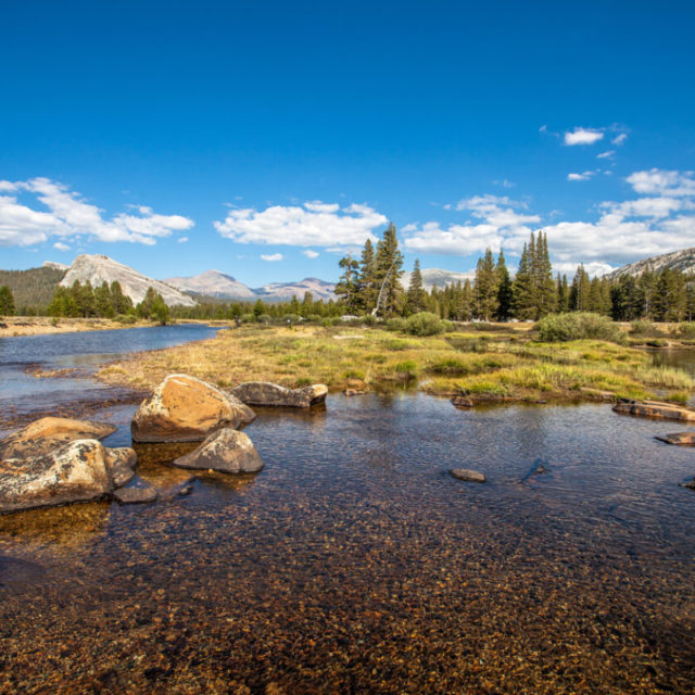 Visiting Yosemite - Tuolumne Meadows