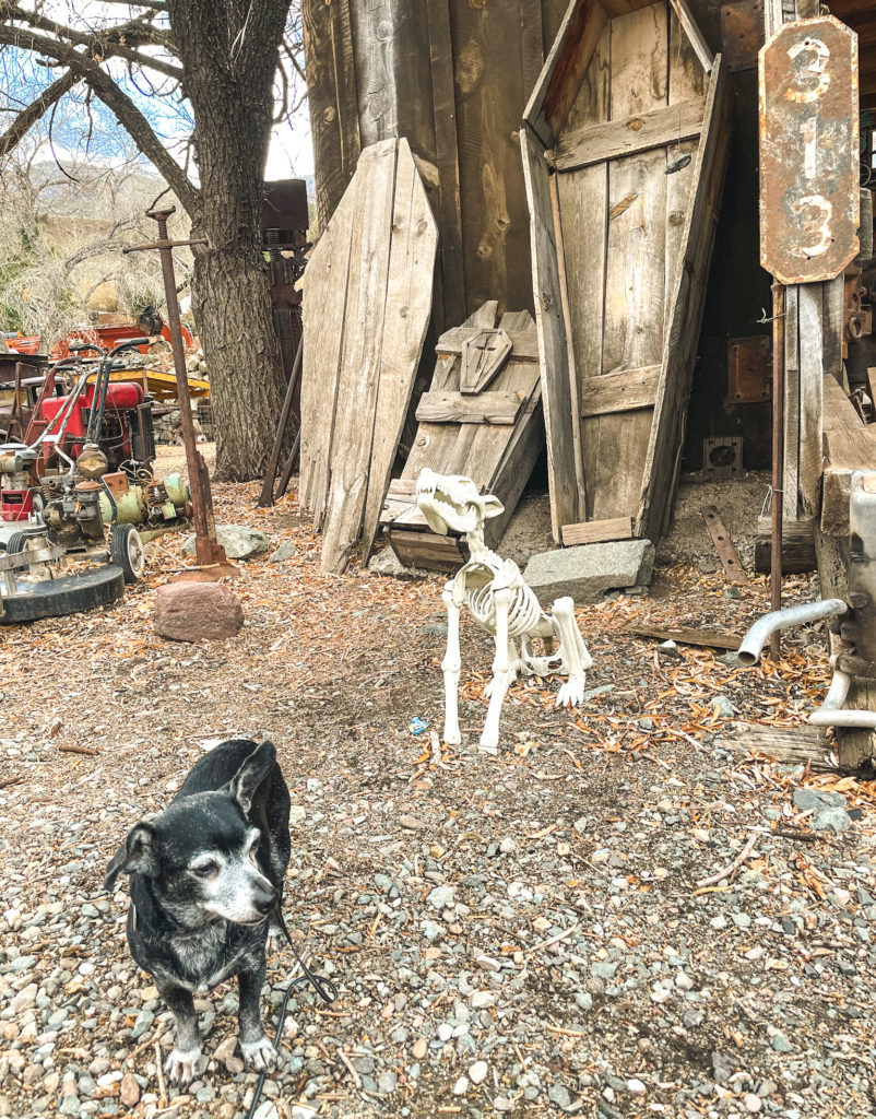 Best things to do in Jerome AZ